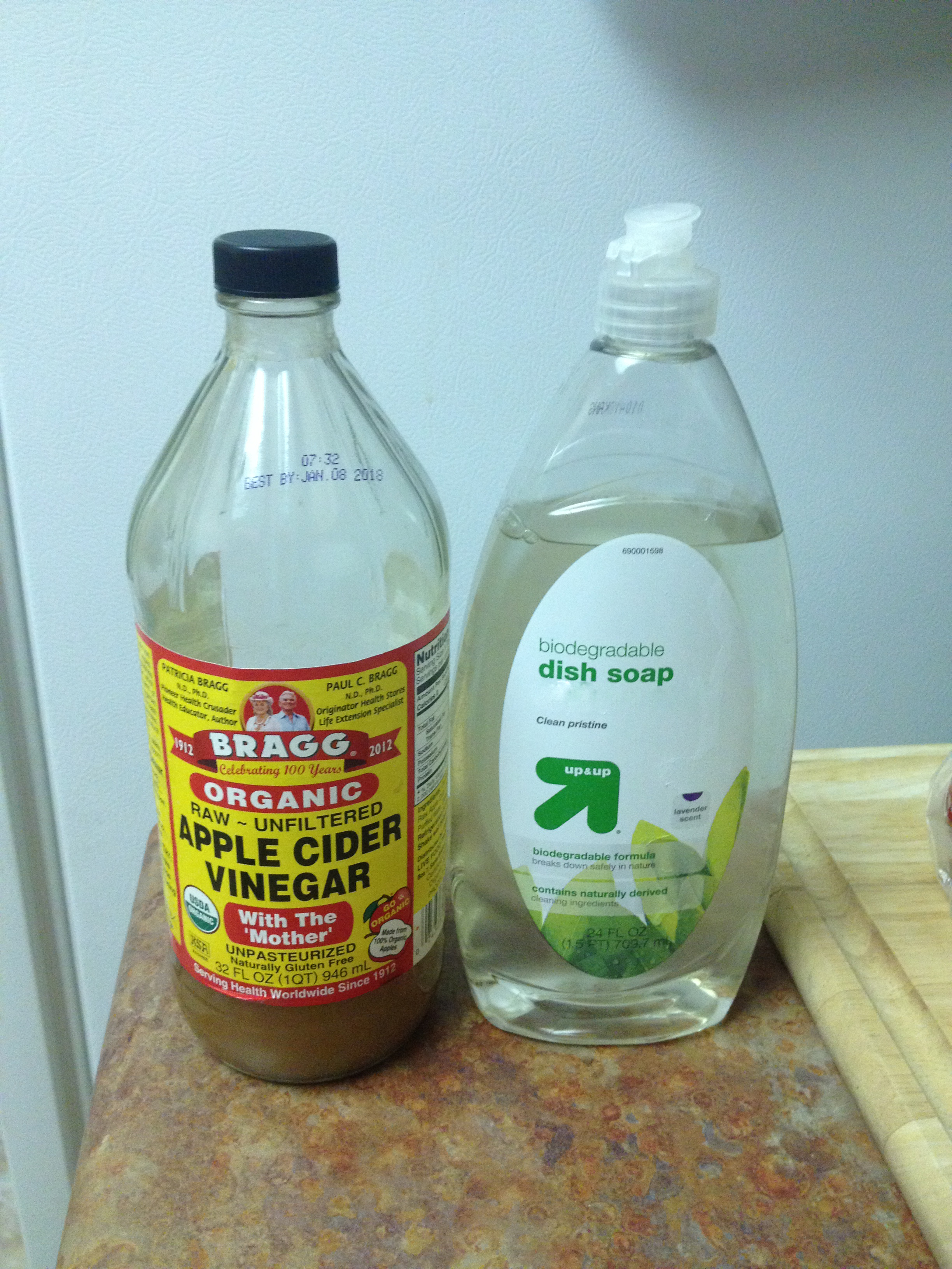 DIY: Gnat/Fruit Fly Death Trap